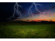 försäkring vid blixtnedslag