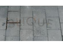 Blique by Nobis