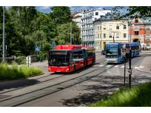 Buss og trikk