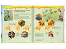 Brummsumm - Entdecke die Welt der Honigbienen Inhalt 2