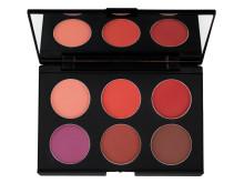 Blush Palette - Dark