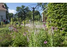 Rodenträdgården på Astrid Lindgrens Näs