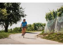 Velofahrer am Mont Vully am Murtensee : Region Fribourg