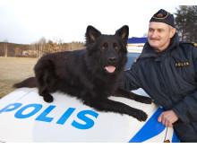 Årets polishund 2012 - Jebas Puck