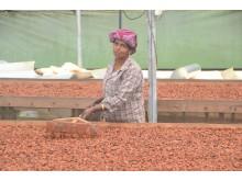 Standout Chocolate är en chokladproducent som ger tillbaka
