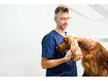 Mikael Granholm on perehtynyt erityisesti ortopediaan.