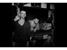 Tvangsarbeidere under 2. verdenskrig