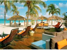 Bucuti på Aruba - Vings mest omtyckta hotell