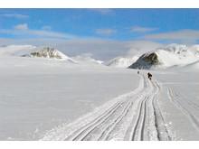 Norwegian Winter Delights