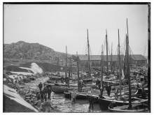 Havnen, Sandved,