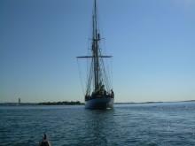 Elev på segeläventyr i höst