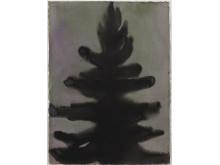 Mats Gustafson, Fir Tree, 2001, akvarell på papper