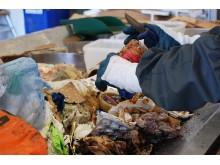 Förra årets plockanalys visade att matsvinnet minskat något medan andelen plastförpackningar i restavfallet ökat.