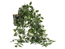 Konstgjord växt OLIVER (59, 95 SEK)