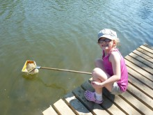 Pond Dipping at Redbank Lodges
