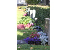 Järfälla: Järfälla kyrkas gamla kyrkogård