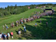 Starten AXA Fjällmaraton 2014. Fotograf: Hans Lundkvist