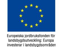 EU Logotype