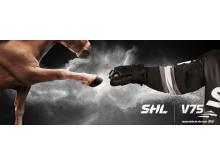 SHL V75 Challenge