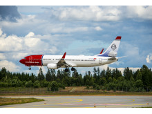 737-800 landing