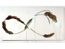 Fattig kunst – rik arv. Pier Paolo Calzolari: Rapsodie Inepte, 1969