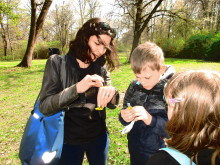 Kräuterwanderung im Englischen Garten