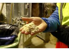 Från livsmedel till etanol hos Lantmännen