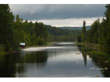 Marnäsån Långsjön