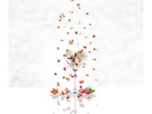 Miljöbild - LitchiKörsbärsblom