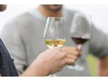 Wohl bekomm's: Weiß- und Rotwein in zwei Mercure Weingläsern