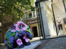 Tropic Feeling: Elephant Parade Emmen