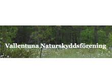 Följ med Vallentuna Naturskyddsförening ut på Angarnssjöängens Naturreservat och uppleva naturen med alla sinnen
