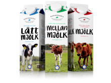 Blekingemjölk