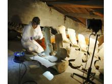 Den otillgängliga valvinden på Göteborgs Naturhistoriska Museum