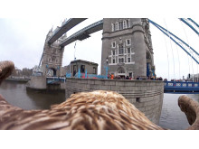 Sony Action Cam Mini London_11