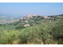 Adagio Stylish Umbria