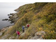 Vandring på Kullaberg