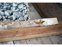 Hussvamp som givit brunröta i Linnégården