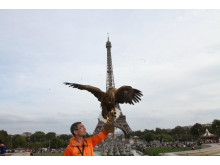 PARIS EAGLE