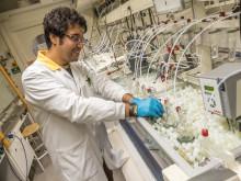 Mohsen Esmaily i sitt laboratorium, 1