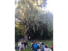Sommarlund: Författarsafari, högläsning i naturen