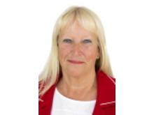 Lena Lundgren, Hälso- och sjukvårdsdirektör i Region Östergötland