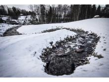 Förbifart Billsta - omlöp vinter