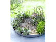 Miniträdgård