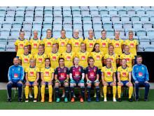 Svenska damlandslaget i fotboll 2018-2019
