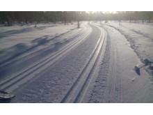 Trysil Skimaraton løypetrasé 11. februar 2016