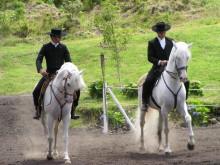Rideoppvisning på Azorene