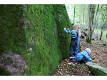 Barn ute i skogen