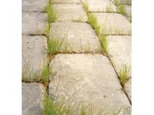 weber Danfogsand - vanlig fogsand ger ogräs i fogarna