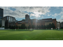 All Out For Cricket in The City 2015